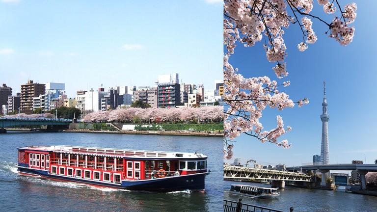 お花見船(定期船 隅田川ルート)のイメージ